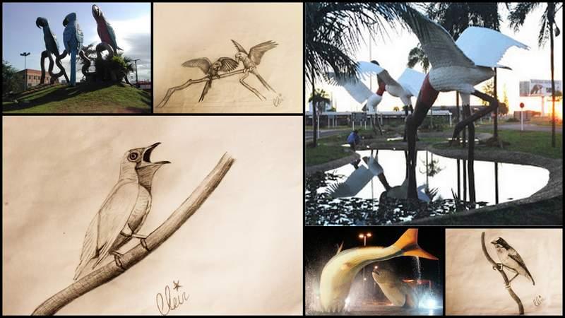 História e cultura de Arapongas serão valorizadas com esculturas de aves da fauna regional